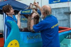 nachtwanderer_pappbootregatta_2019_09